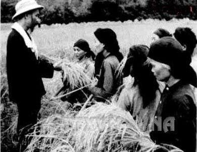 Kỷ niệm 129 năm Ngày sinh Chủ tịch Hồ Chí Minh (19/5/1890-19/5/2019): Tấm lòng Bác Hồ với nông dân